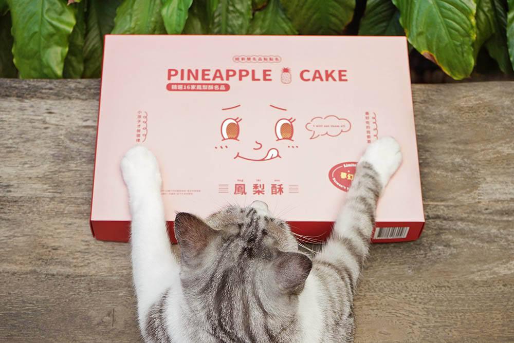 鳳梨酥名品點點名
